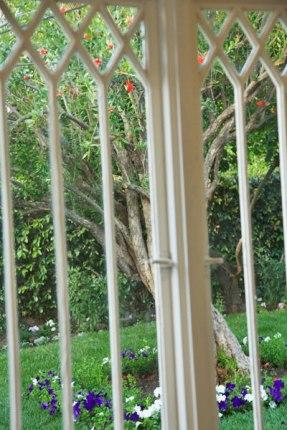 Griffin-window-garden_600px
